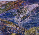 shirley-pettibone-spring-hills-gorman-watercolor-25x30.jpg